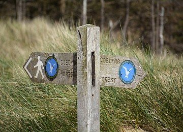 Anglesey Coastal Path sign newborough forest